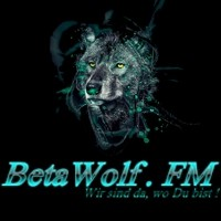 betawolf-studio-1