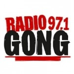 radio-gong-icetigers-fanradio