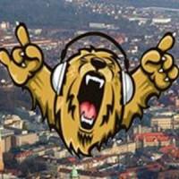 braunschweiger-radio