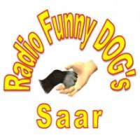 funny-dogs-saar