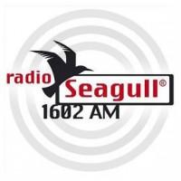 radio-seagull