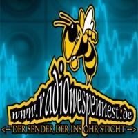 radio-wespennest