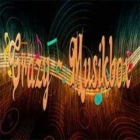 crazy-musikbox