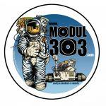 modul303
