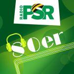 radio-psr-80er