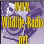 wildlife-radio-mainstream