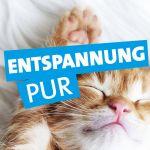 rpr1-entspannung-pur