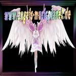 angels-musicplanet
