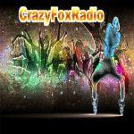 crazyflashsound