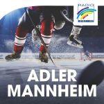 radio-regenbogen-adler-mannheim